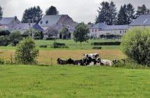 Immobilier et COVID 19 la revanche des villes de campagnes